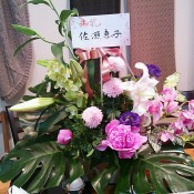 DSC_2219_2.JPG