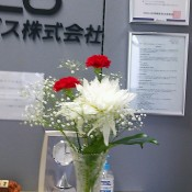 DSC_2284.JPG