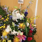 DSC_3568.JPG