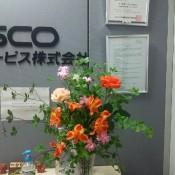 DSC_5575.JPG