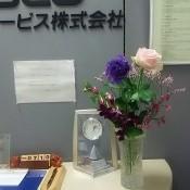 DSC_8700.JPG