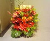 20111206132457_2.jpg
