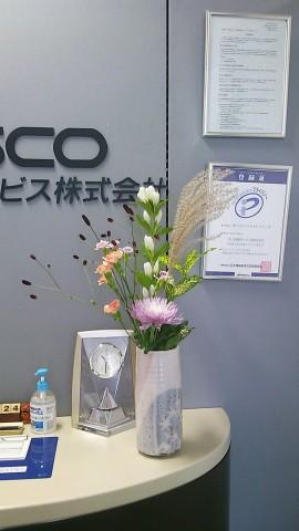 DSC_1370.JPG