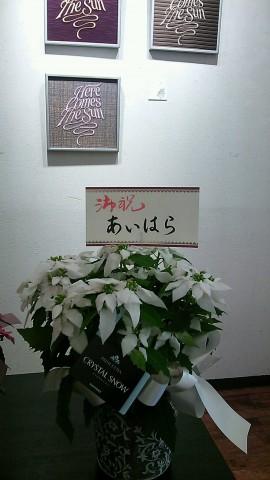 DSC_1674.JPG