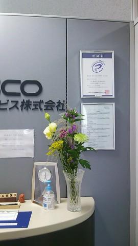DSC_2639.JPG