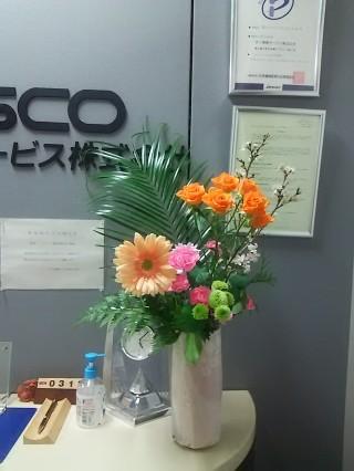 DSC_7905.JPG