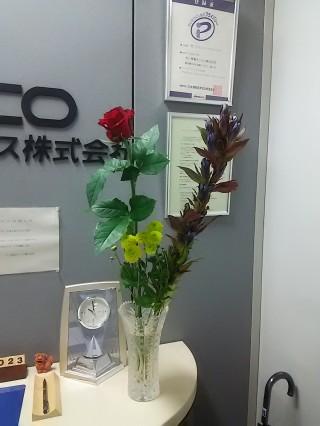DSC_9404.JPG