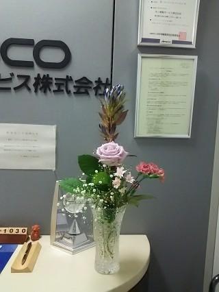 DSC_9490.JPG
