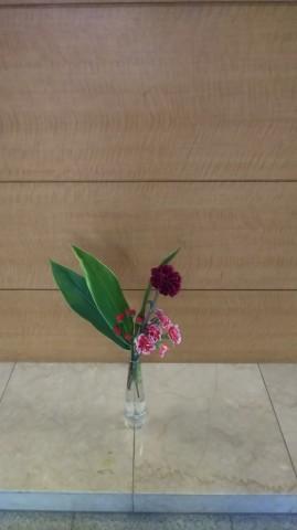 Image1603242832653.jpg