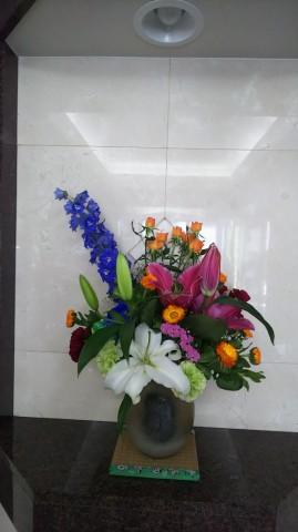 Image1613442694705.jpg